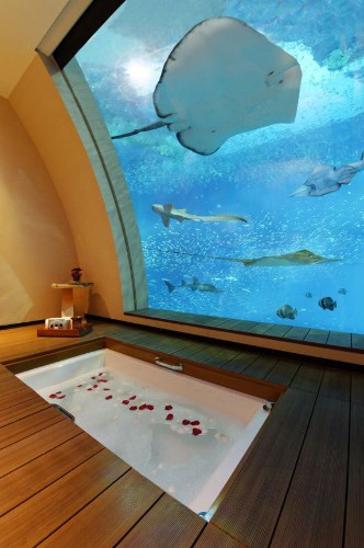 Hotel rooms with unusual views