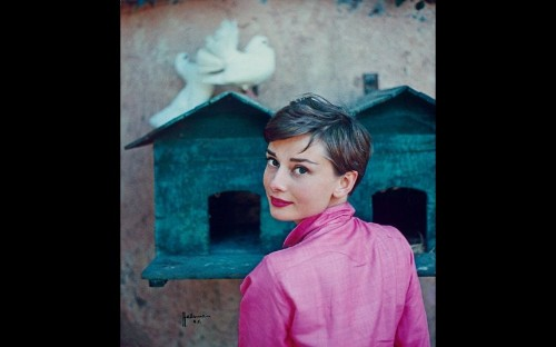 Audrey Hepburn: Portraits of an Icon at the National Portrait Gallery - Telegraph