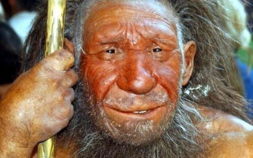 Scientists to develop Neanderthal 'miniature brains'
