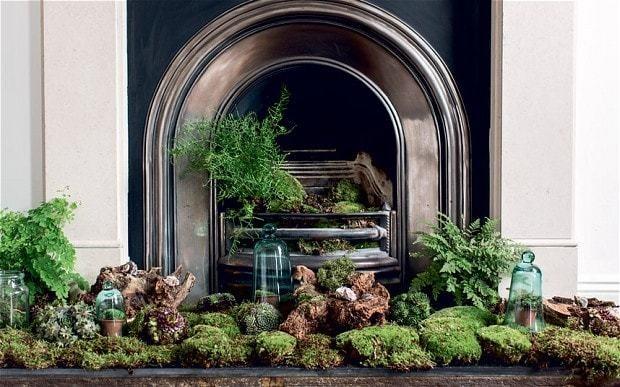 The art of indoor gardens