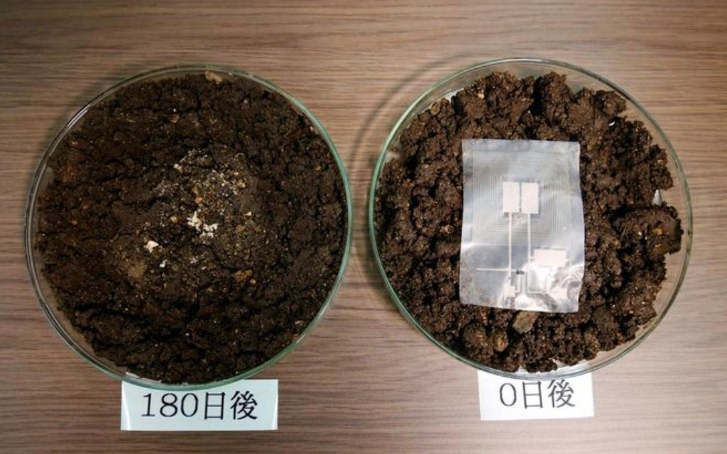 Japanese scientists invent electronic device that can biodegrade