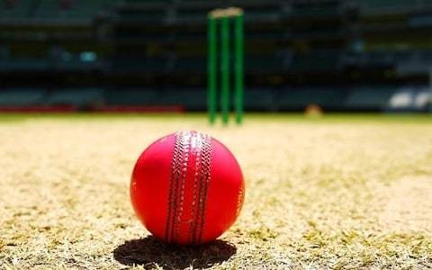 Revealed: The full extent of abuse of officials in grassroots cricket and rugby