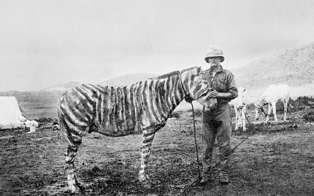 Secrets of World War I: Papier mache heads, ponies dressed as zebras and fluorescent sea lions