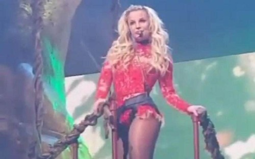 Britney Spears gets stuck up a tree during Las Vegas show