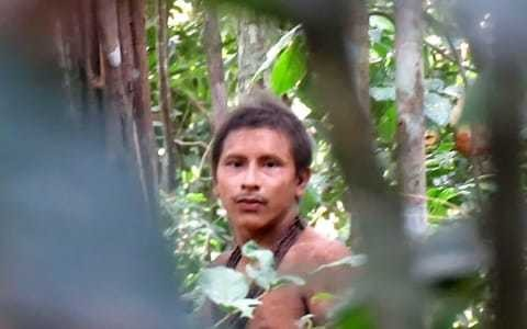 Rare footage of Brazil tribe 'is evidence' of new threat from logging
