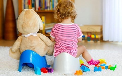 Meet the £700-a-day potty trainer... so why are children in nappies getting older?