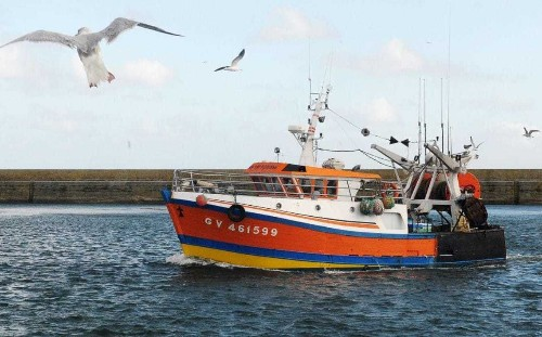 Foreign EU trawlers catch more than half fish landed from British waters