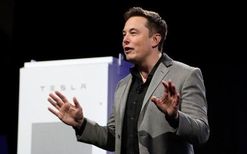 Top money manager: 'We avoid Tesla because of Elon Musk'