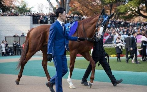 Japanese runner Cheval Grand aims to shake up fiercely-contested King George