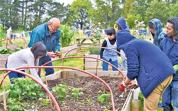 University gardening: students who spend the whole day in beds