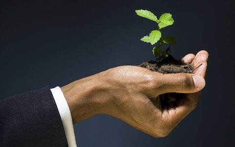 How to prepare for a successful venture capital pitch