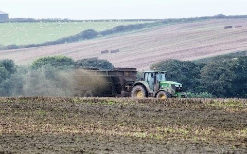 Countryside becoming 'lawless', say experts, as Environment Agency cuts inspections by one third