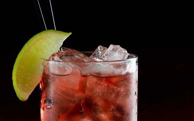 Cranberry and ginger fizz cocktail recipe