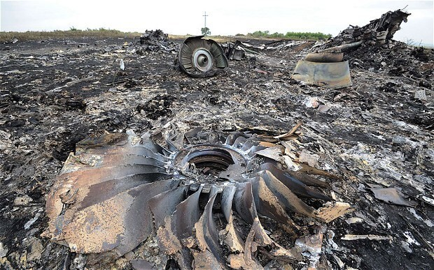 Mother of German MH17 victim takes Ukraine to human rights court