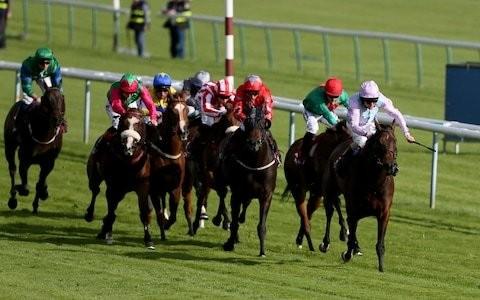 Marlborough racing tips for Friday, September 27
