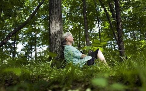 Nature is good for your health - but only if it's two hours or more a week, scientists say