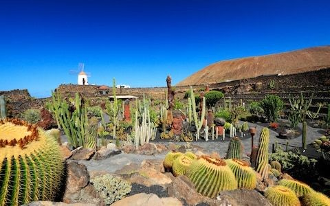 How to find the hidden cultural corners of the Canary Islands