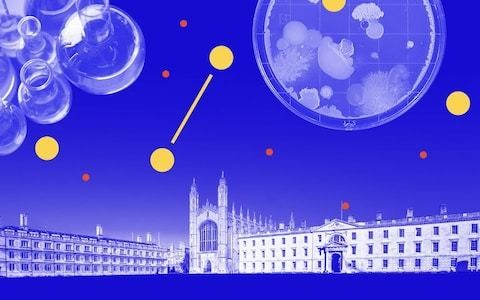 How biotech became part of Cambridge's DNA