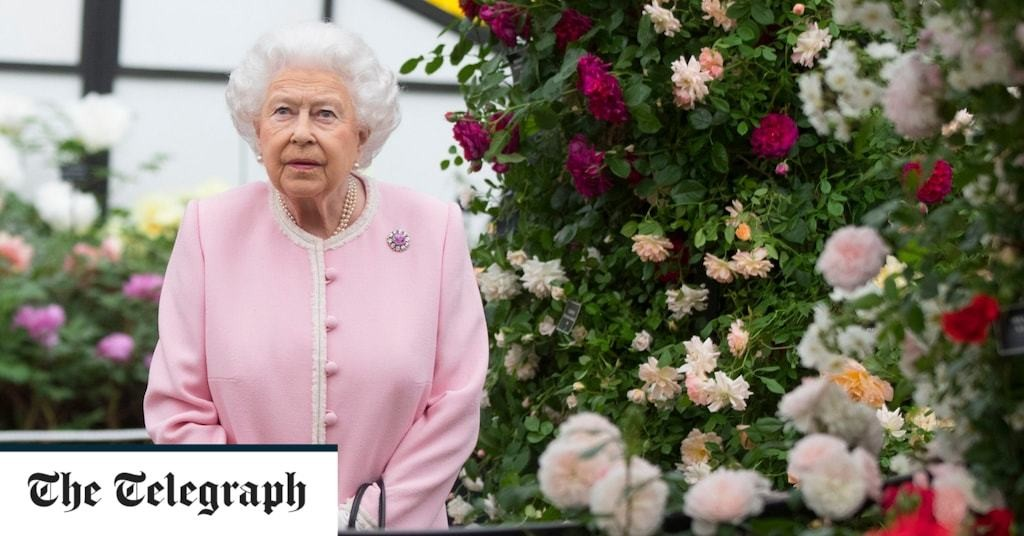 Queen hails 'resilience' of British people in surviving lockdown as she views photography project in 'royal visit' from home