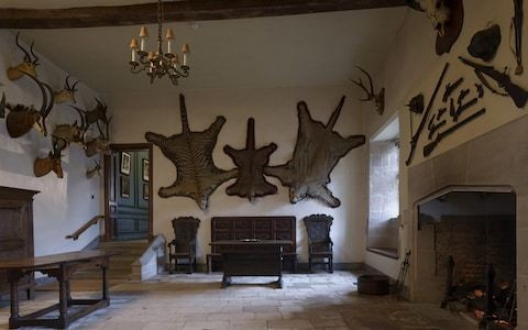 National Trust replaces tiger skins with art installation about dwindling rhino numbers