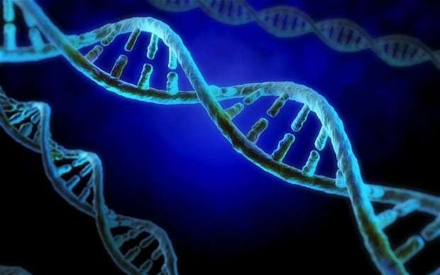 Children could have DNA tested at birth