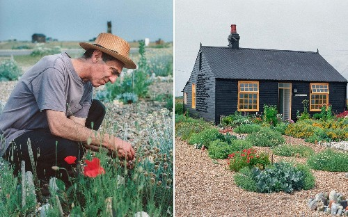 'Every bloom that flowers in the shingle is a miracle': The fight to save filmmaker Derek Jarman's coastal refuge