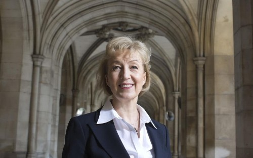 'I've been under attack, it's been shattering': Andrea Leadsom apologises to Theresa May over motherhood comments and admits furore has left her hurt
