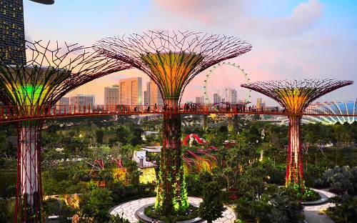 The world's most unusual gardens
