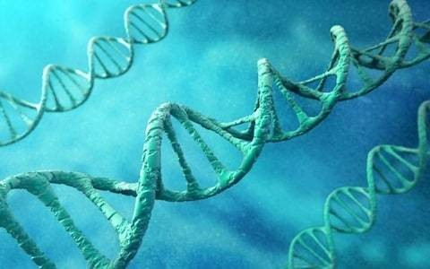 'Most exciting cancer treatment since chemotherapy' could save patients using DNA tests