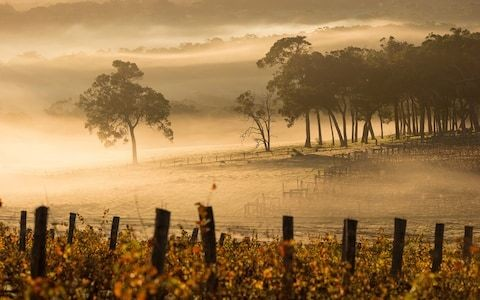 The perfect one-week holiday in Western Australia