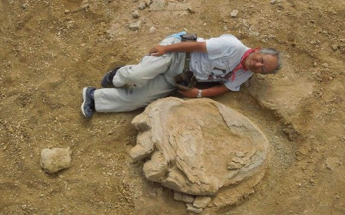 Dinosaur footprint among largest on record discovered in Mongolia's Gobi Desert