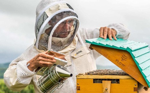 'Suddenly it was total mayhem': Australian inventors celebrate success of revolutionary bee hive