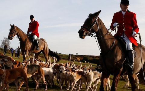 People found guilty of illegal fox hunting could be jailed for up to 5 years under Labour's plans