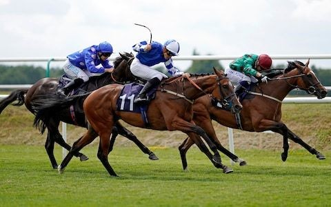 Marlborough racing tips for Wednesday, July 17