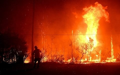 Australian firefighters say 'we can't perform miracles' as Sydney suffers unprecedented pollution