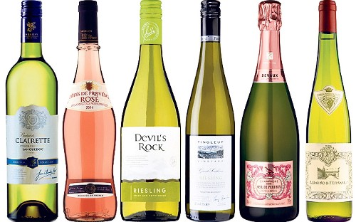 Summer wines: the 18 best whites, rosés and champagnes
