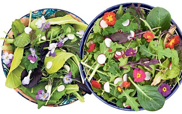 Super bowls: how to create a delicious organic salad