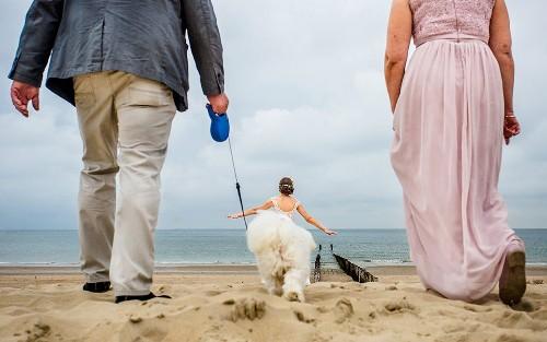The world's funniest wedding photos