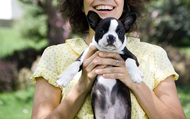 Pets and the single woman: why dogs are the new cats