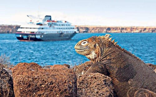 The world's coolest cruises for young travellers