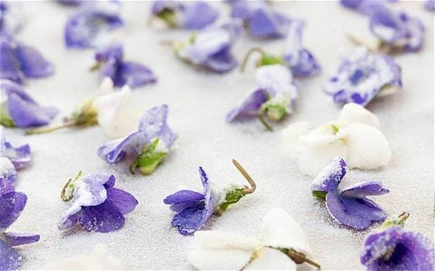 Flower power: cooking with violets