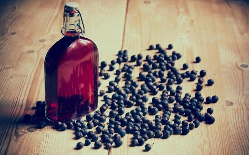 Sloe gin recipe (and the best bottles to buy)