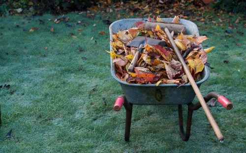 New ideas to try in the garden for 2016