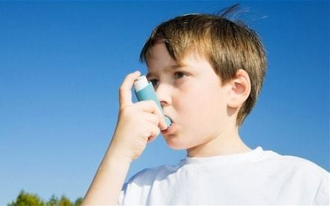 Obesity epidemic may be fuelling the rise in childhood asthma