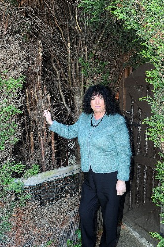 Woman arrested, held in cell for six hours and put on trial for 'over-pruning' tree