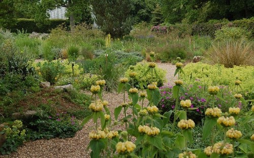 Drought friendly gardens: in pictures - Telegraph