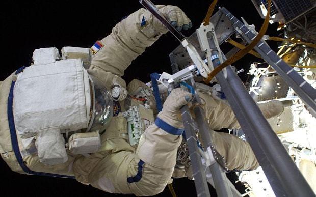 Sea plankton 'found living outside International Space Station'