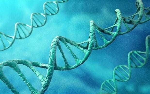 First genetically modified humans could exist within two years