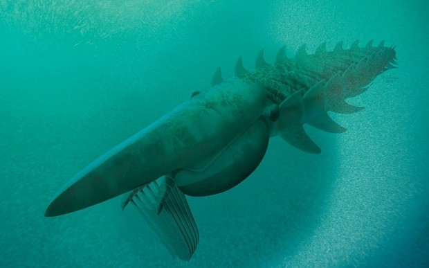 Lobster 'as big as a human' found