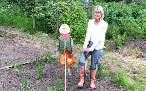 The truth behind my neat allotment: I have a gardener